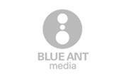 Blue Ant Copy